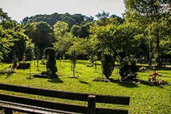 Orgelpfeifer Trostberg Friedhof Baumbestattung Teaser