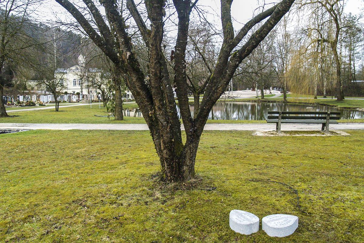 Auf dem Trostberger Friedhof sind jetzt Baumbestattungen möglich.